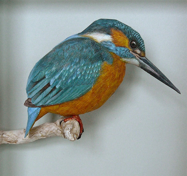 Realistic Birds Made from Paper and Watercolor Paint by Johan Scherft