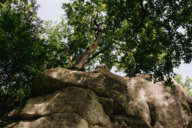 Escalade en Charente - Puymoyen-7