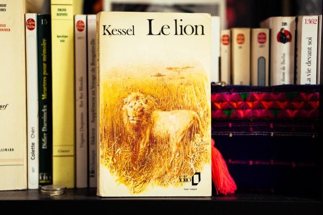 Mes livres préférés - Le Lion
