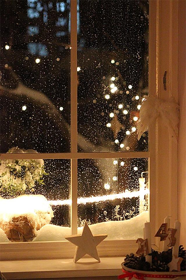 Home for Christmas / Blue Hortensia