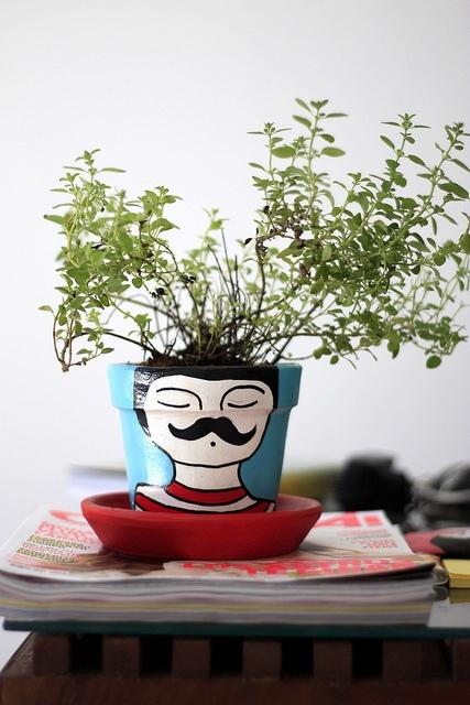 Fun Plant Pot