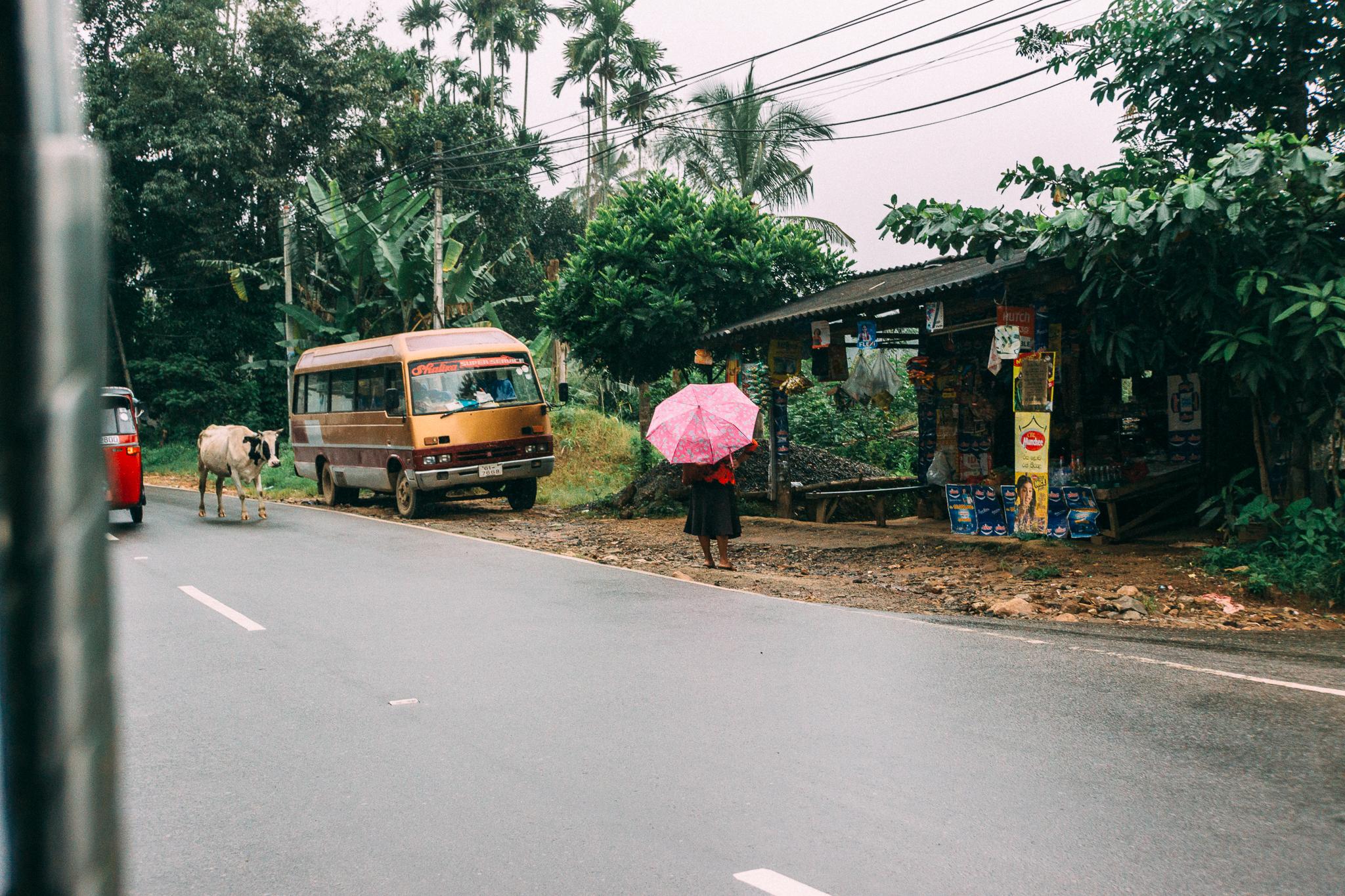 Sri Lanka-35.jpg