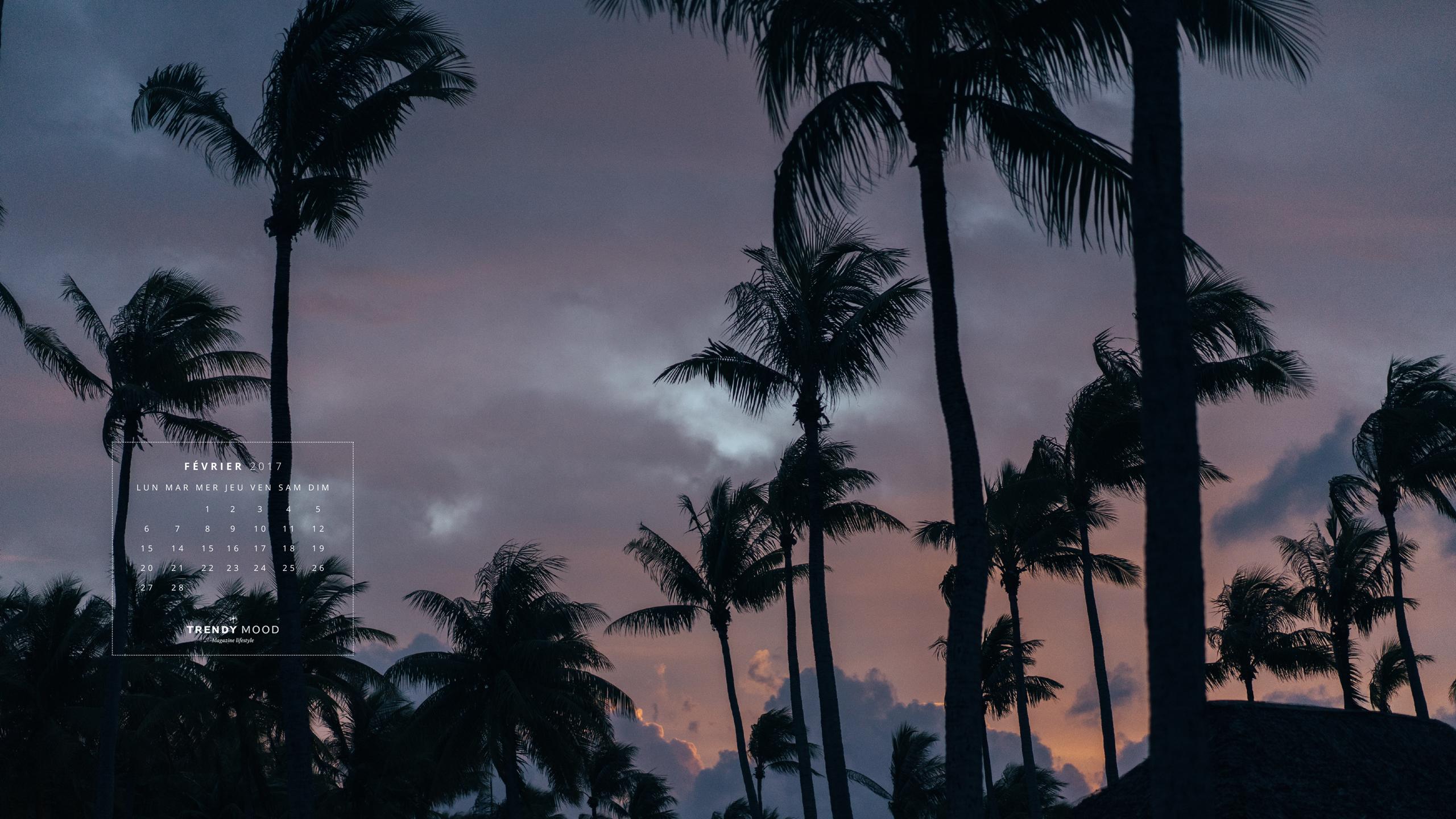 Fond D Ecran Et Calendrier Tahitien Pour Fevrier Trendy Mood Magazine Lifestyle