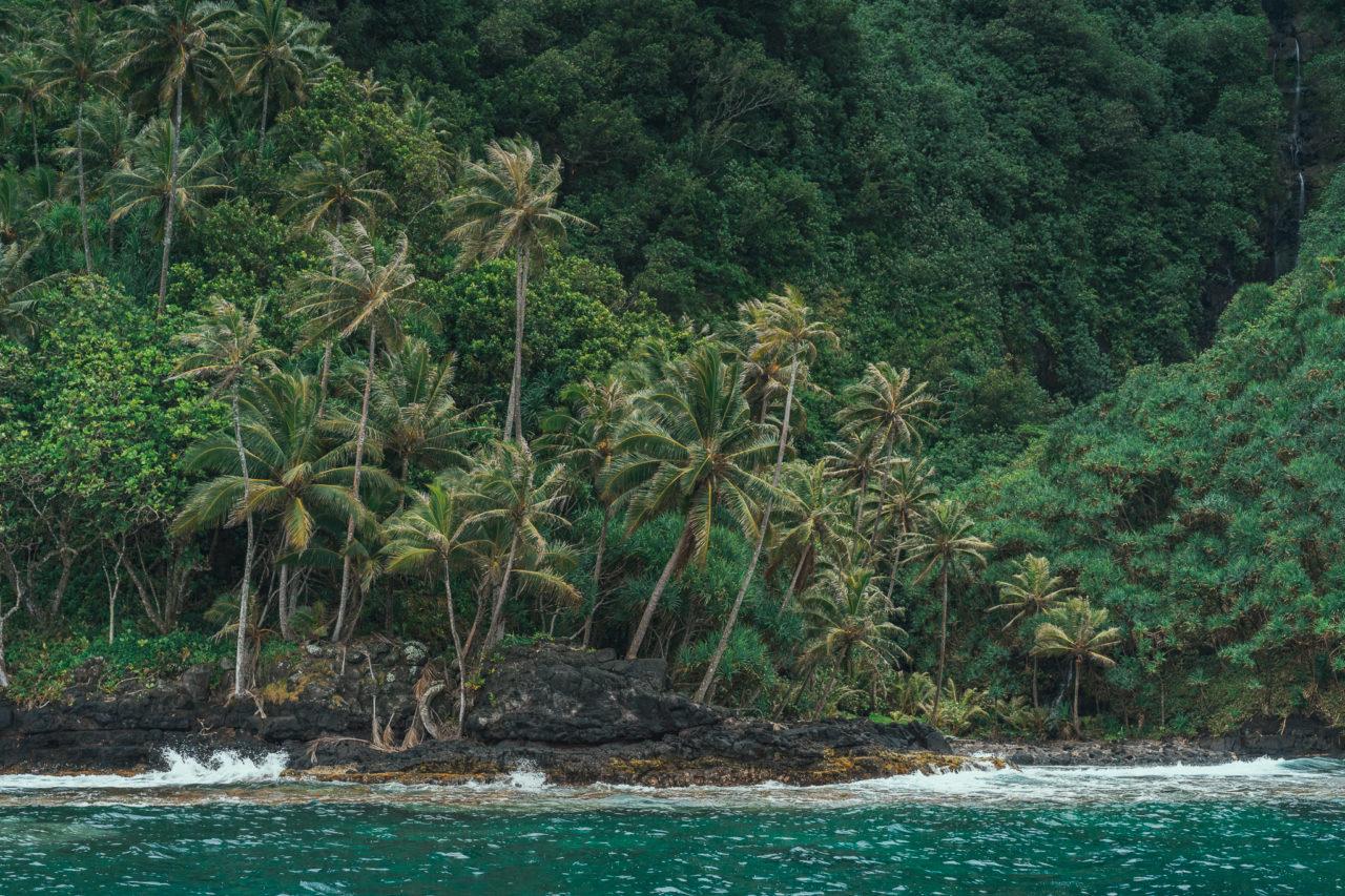 http://www.trendymood.com/wp-content/uploads/2018/03/Tahiti-Teahupoo-1280x853.jpg
