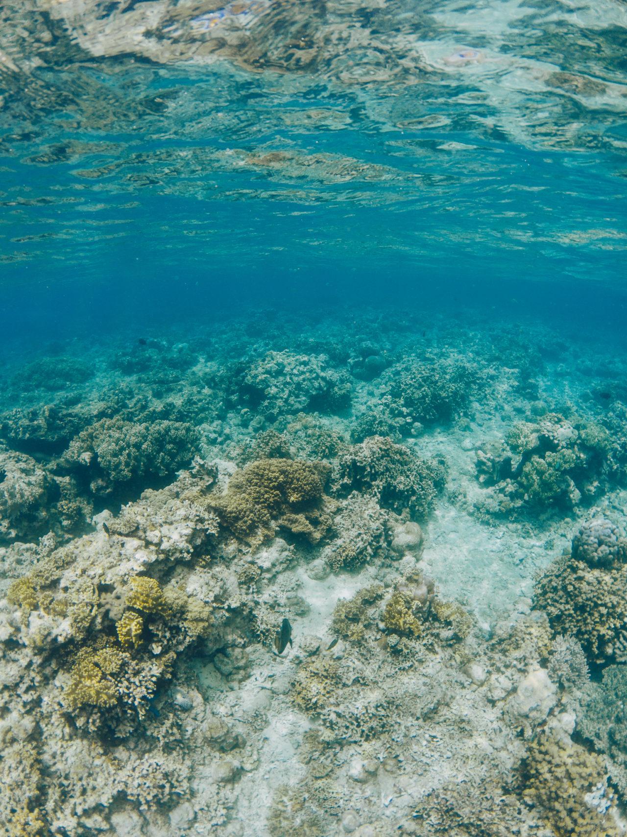 http://www.trendymood.com/wp-content/uploads/2018/04/Pur-Projet-Avène-Eau-Thermale-Bali-Coraux-Snorkeling-1280x1707.jpg