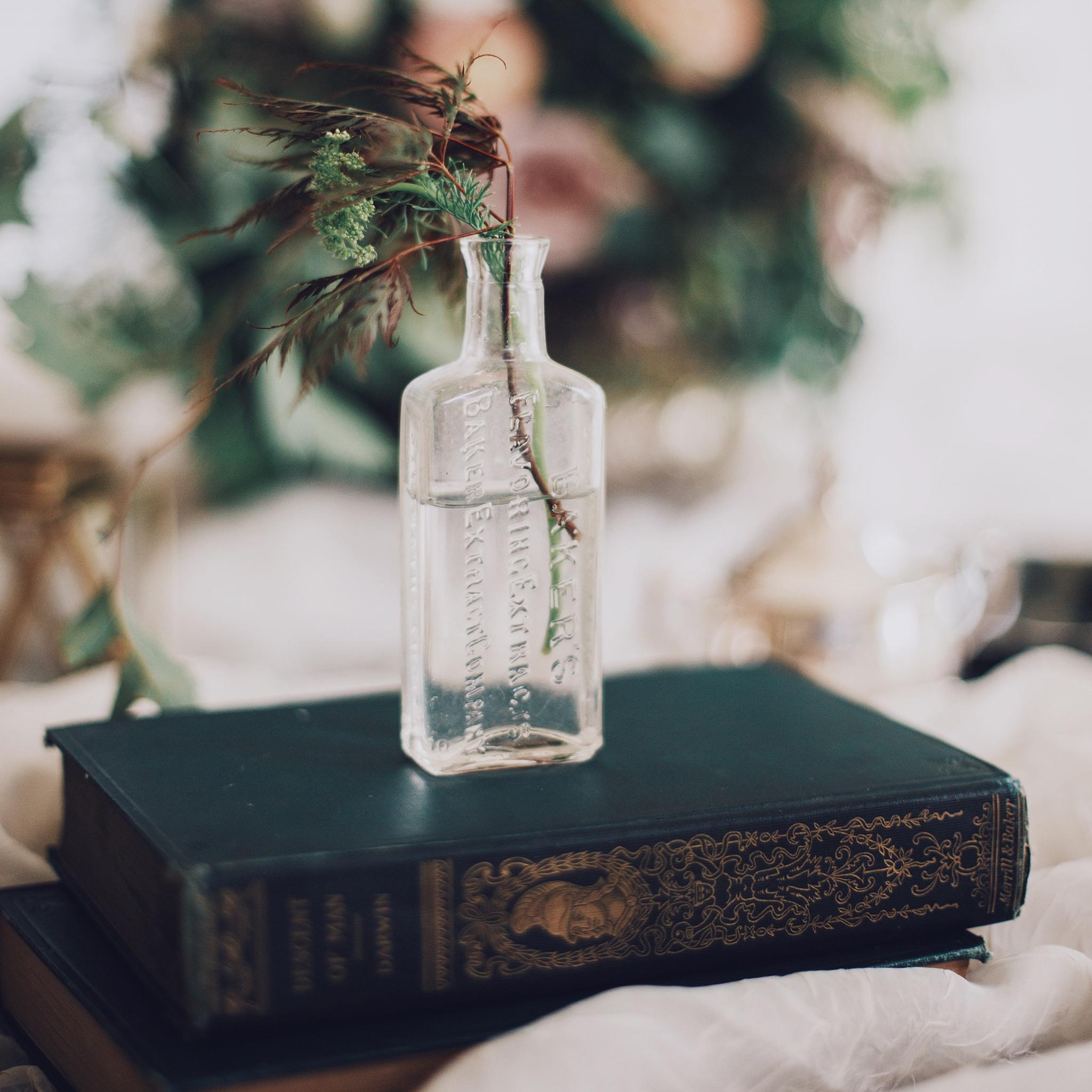 Club de lecture - Grands classiques de la littérature